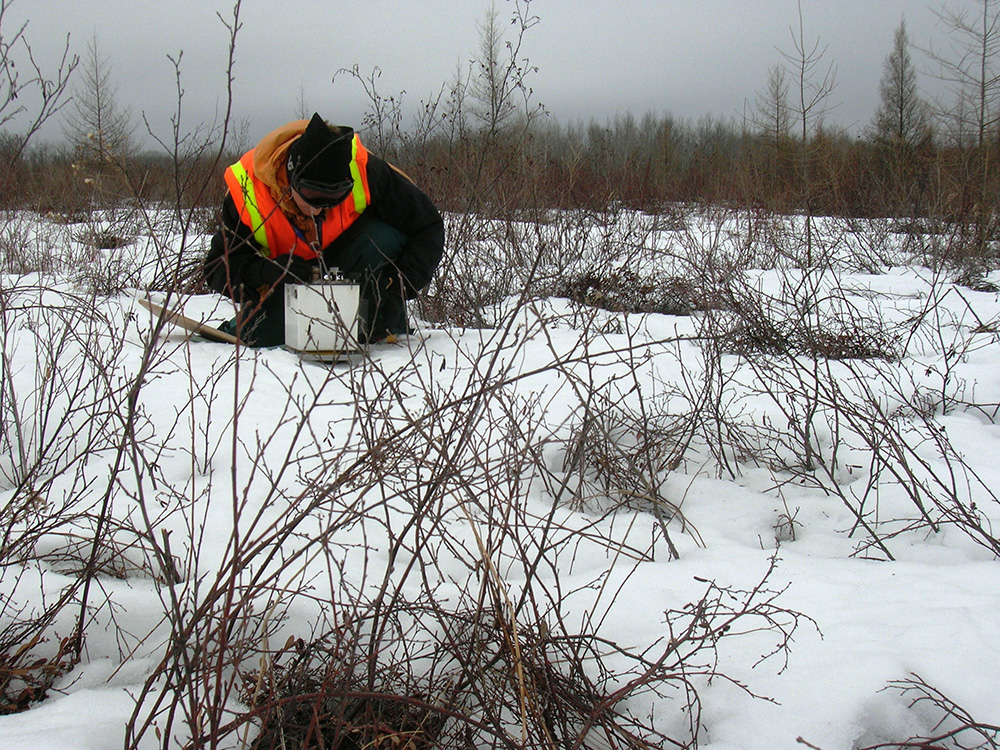 Land Gravity Surveys, Ground Magnetic Surveys, Exploration